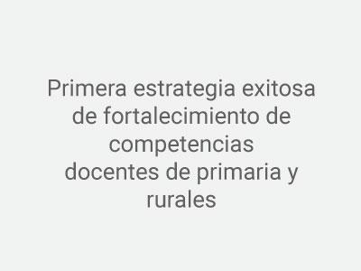 Imagen Indicador Estrategia exitosa docentes